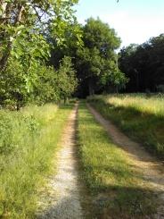 Chemin d'arrivée